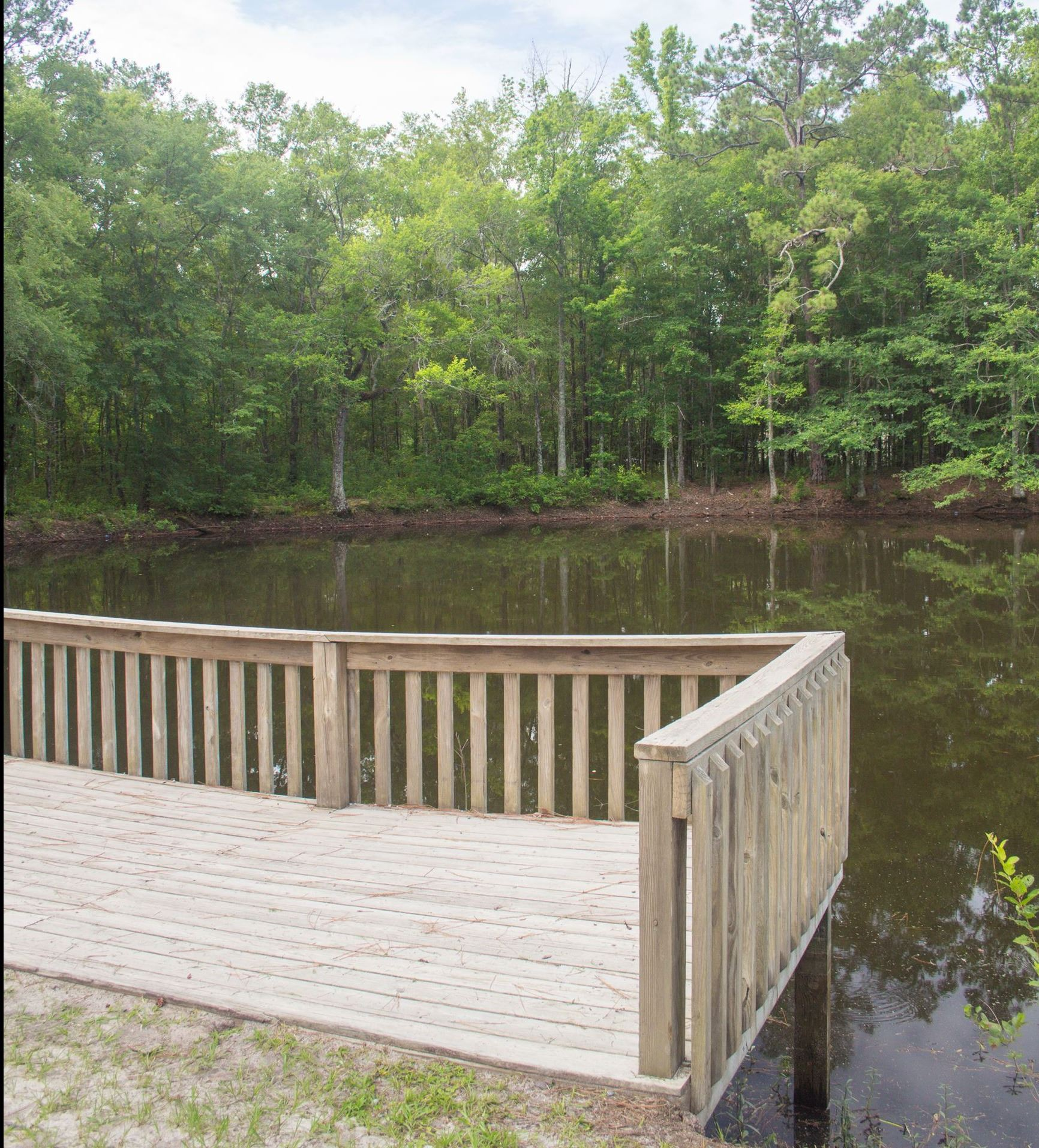 An image of a wooden dock looking over a small pond.