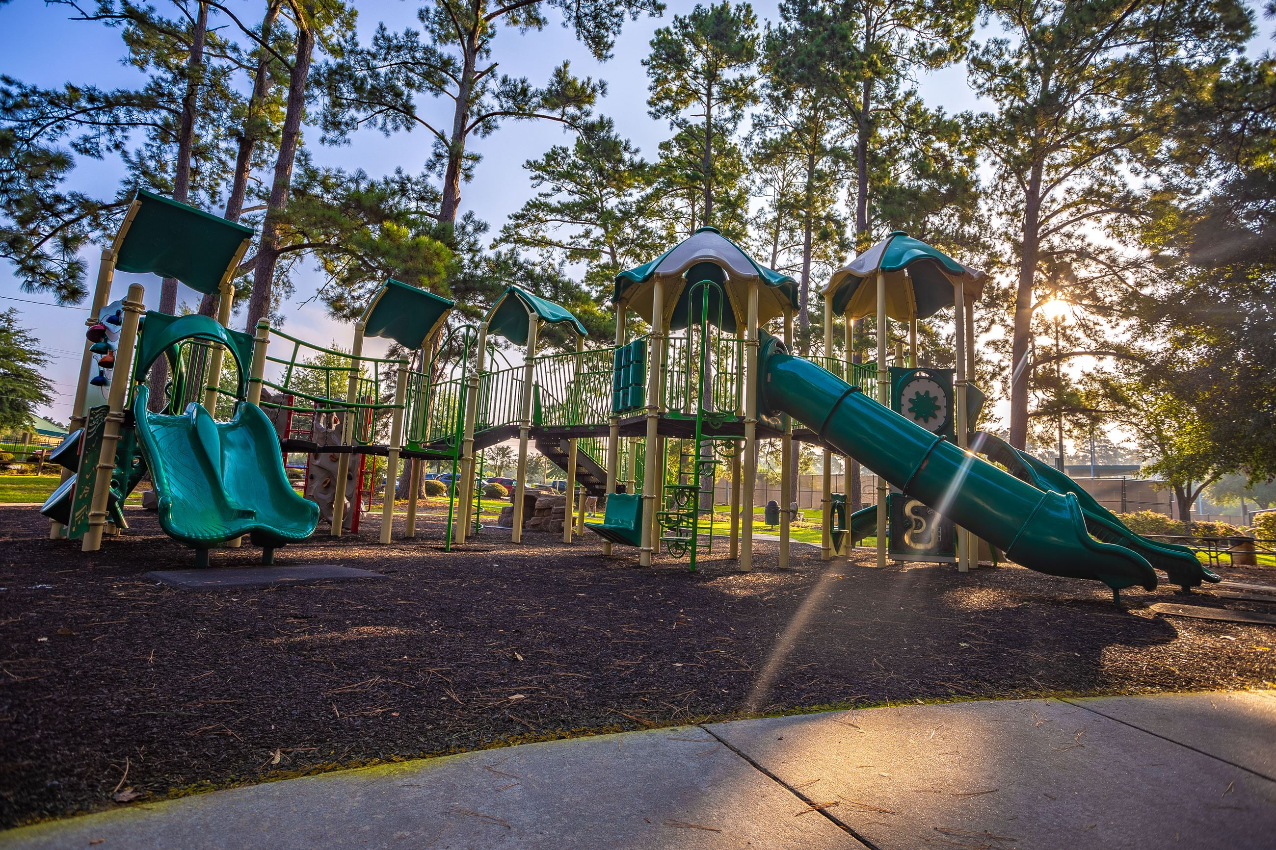 An image of a green playground with slides surrounded by trees.