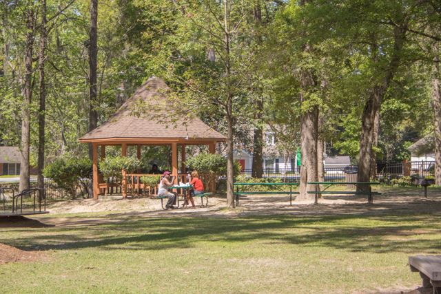 Image of people eating at a picnic table in a park.