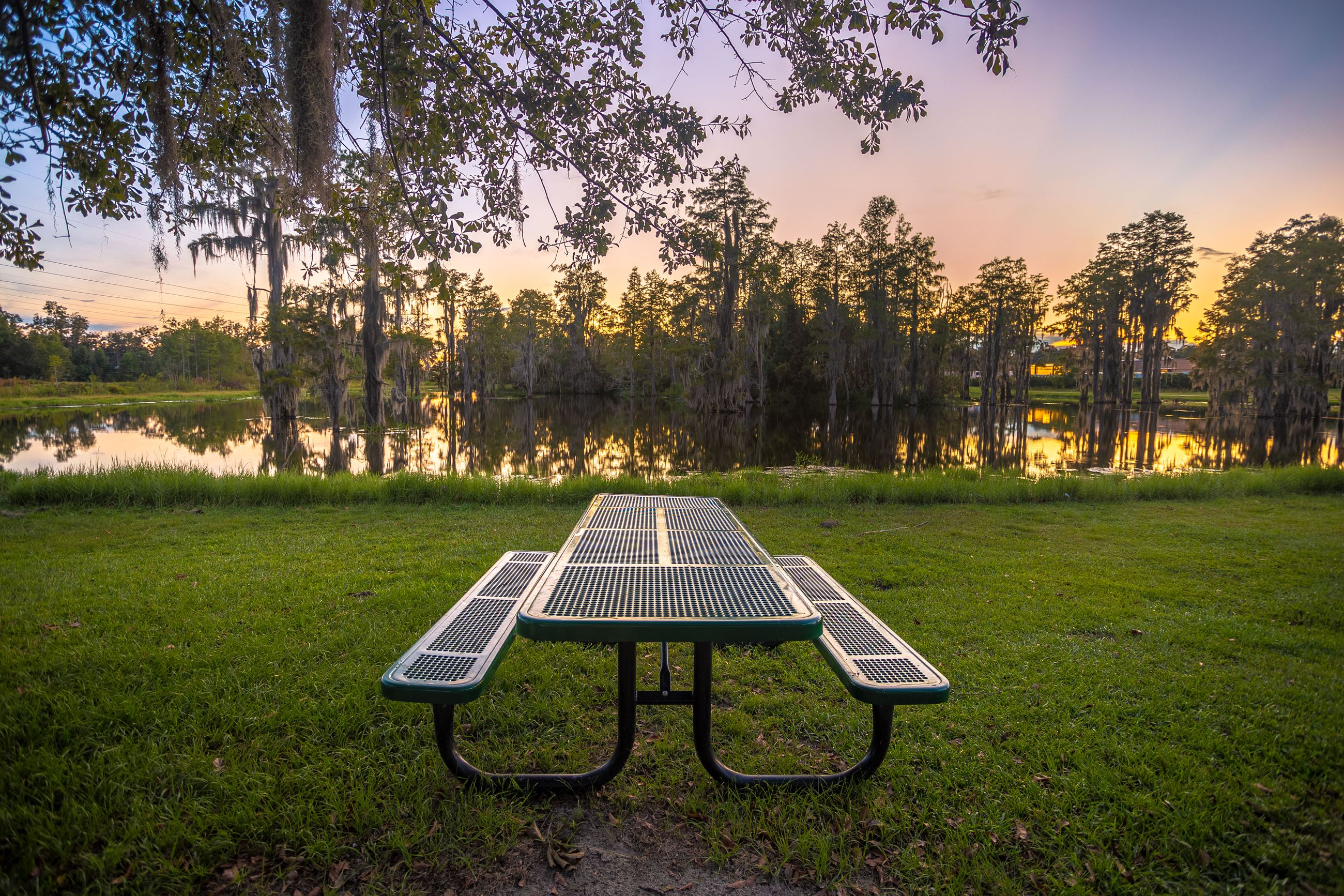 An image of a green picnic table in front of a cypress pond at sunset.
